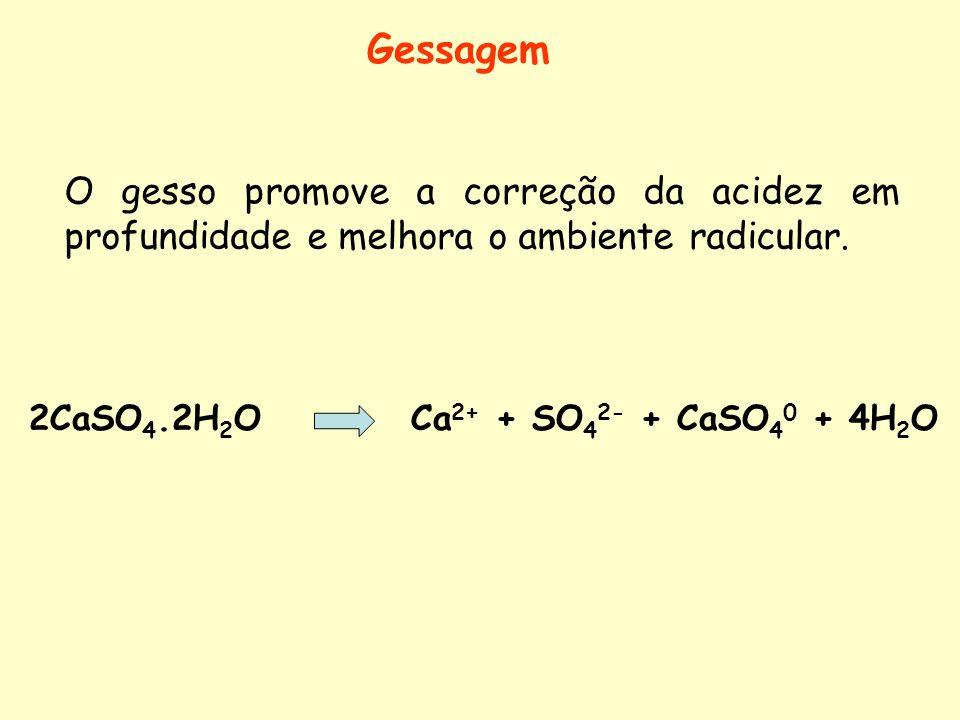 Gessagem O gesso promove a correção da acidez em profundidade e melhora o ambiente radicular. 2CaSO 4.2H 2 O Ca 2+ + SO 4 2- + CaSO 4 0 + 4H 2 O