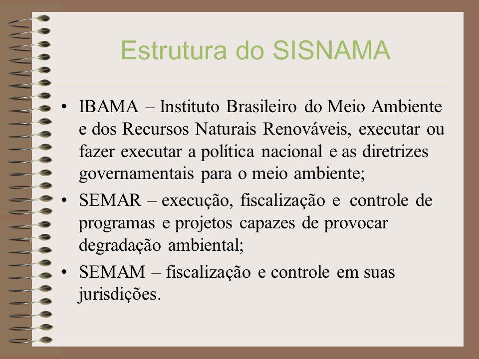 Estrutura do SISNAMA IBAMA – Instituto Brasileiro do Meio Ambiente e dos Recursos Naturais Renováveis, executar ou fazer executar a política nacional
