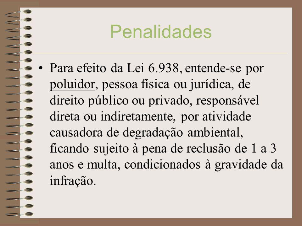 Penalidades Para efeito da Lei 6.938, entende-se por poluidor, pessoa física ou jurídica, de direito público ou privado, responsável direta ou indiret