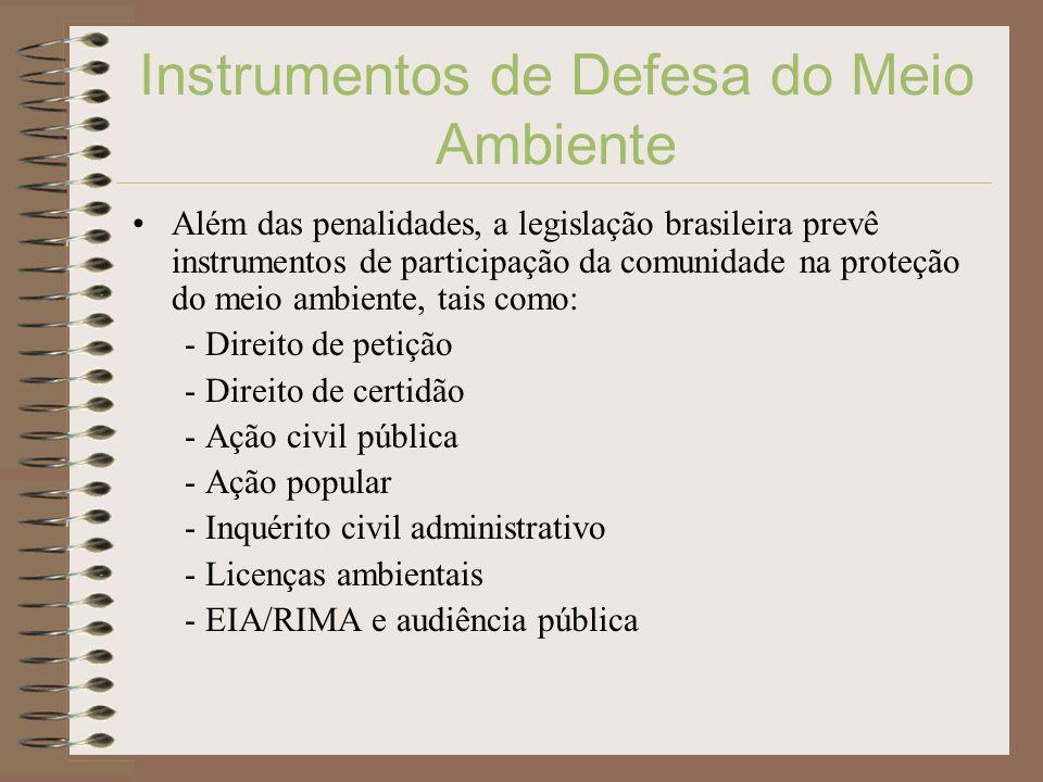 Instrumentos de Defesa do Meio Ambiente Além das penalidades, a legislação brasileira prevê instrumentos de participação da comunidade na proteção do