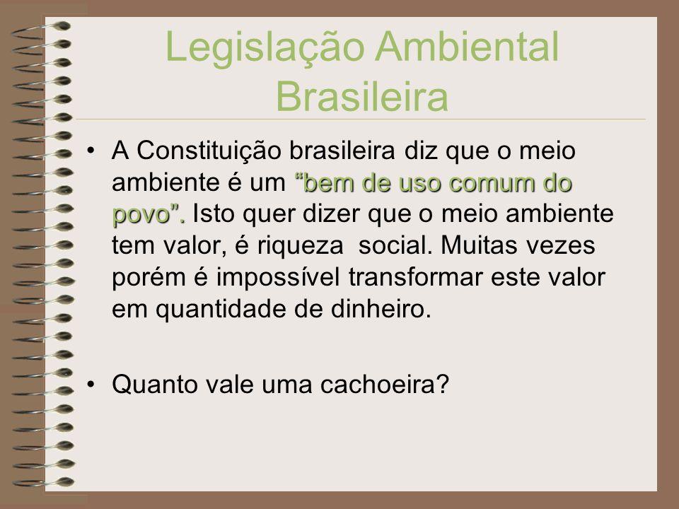 Legislação Ambiental Brasileira bem de uso comum do povo.A Constituição brasileira diz que o meio ambiente é um bem de uso comum do povo. Isto quer di