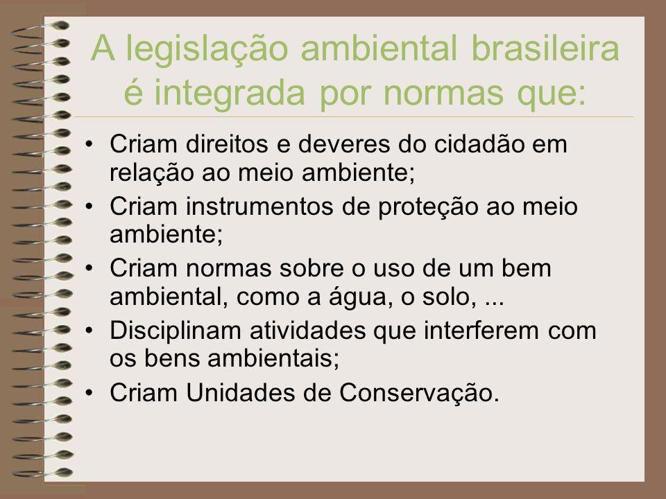 A legislação ambiental brasileira é integrada por normas que: Criam direitos e deveres do cidadão em relação ao meio ambiente; Criam instrumentos de p