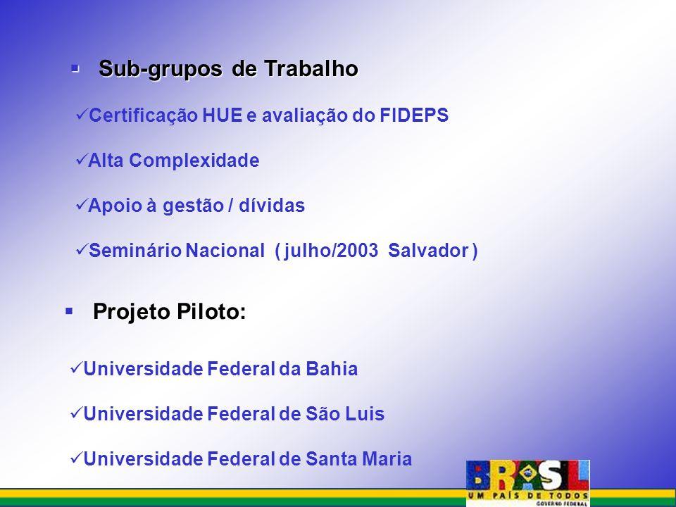 Sub-grupos de Trabalho Sub-grupos de Trabalho Certificação HUE e avaliação do FIDEPS Alta Complexidade Apoio à gestão / dívidas Seminário Nacional ( j