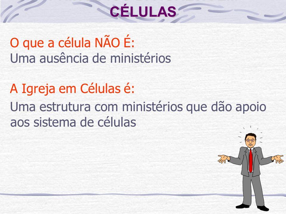 PRINCÍPIOS DA IGREJA EM CÉLULAS O que a célula NÃO É: Uma ausência de ministérios A Igreja em Células é: Uma estrutura com ministérios que dão apoio a