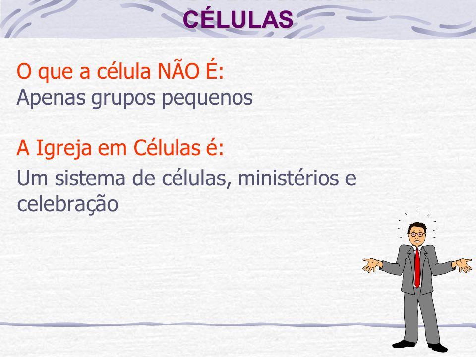 PRINCÍPIOS DA IGREJA EM CÉLULAS O que a célula NÃO É: Apenas grupos pequenos A Igreja em Células é: Um sistema de células, ministérios e celebração