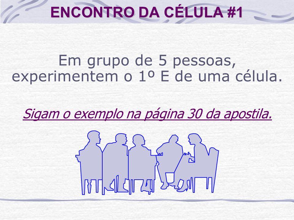 ENCONTRO DA CÉLULA #1 Em grupo de 5 pessoas, experimentem o 1º E de uma célula. Sigam o exemplo na página 30 da apostila.