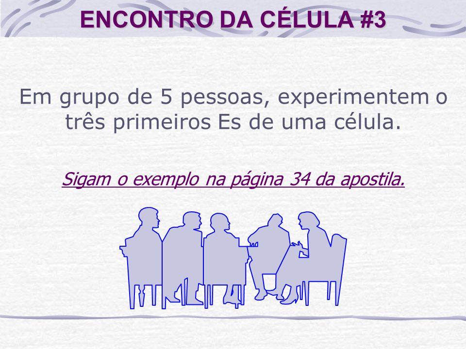 ENCONTRO DA CÉLULA #3 Em grupo de 5 pessoas, experimentem o três primeiros Es de uma célula. Sigam o exemplo na página 34 da apostila.