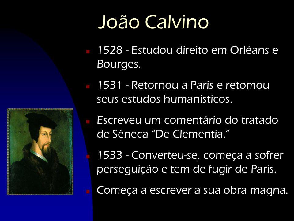 João Calvino n 1528 - Estudou direito em Orléans e Bourges. n 1531 - Retornou a Paris e retomou seus estudos humanísticos. n Escreveu um comentário do
