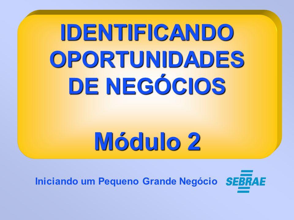 IDENTIFICANDOOPORTUNIDADES DE NEGÓCIOS Módulo 2 Iniciando um Pequeno Grande Negócio