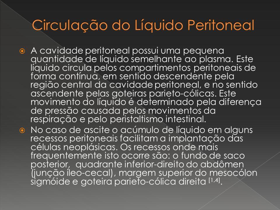 A cavidade peritoneal possui uma pequena quantidade de líquido semelhante ao plasma. Este líquido circula pelos compartimentos peritoneais de forma co