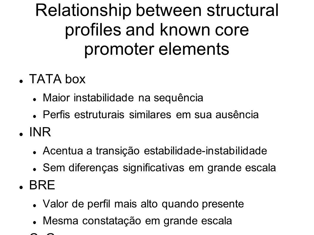 Relationship between structural profiles and known core promoter elements TATA box Maior instabilidade na sequência Perfis estruturais similares em sua ausência INR Acentua a transição estabilidade-instabilidade Sem diferenças significativas em grande escala BRE Valor de perfil mais alto quando presente Mesma constatação em grande escala CpG Amplitude mais baixa quando ausente