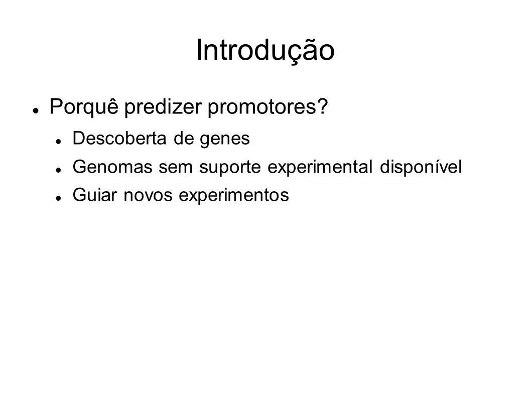 Introdução Porquê predizer promotores? Descoberta de genes Genomas sem suporte experimental disponível Guiar novos experimentos