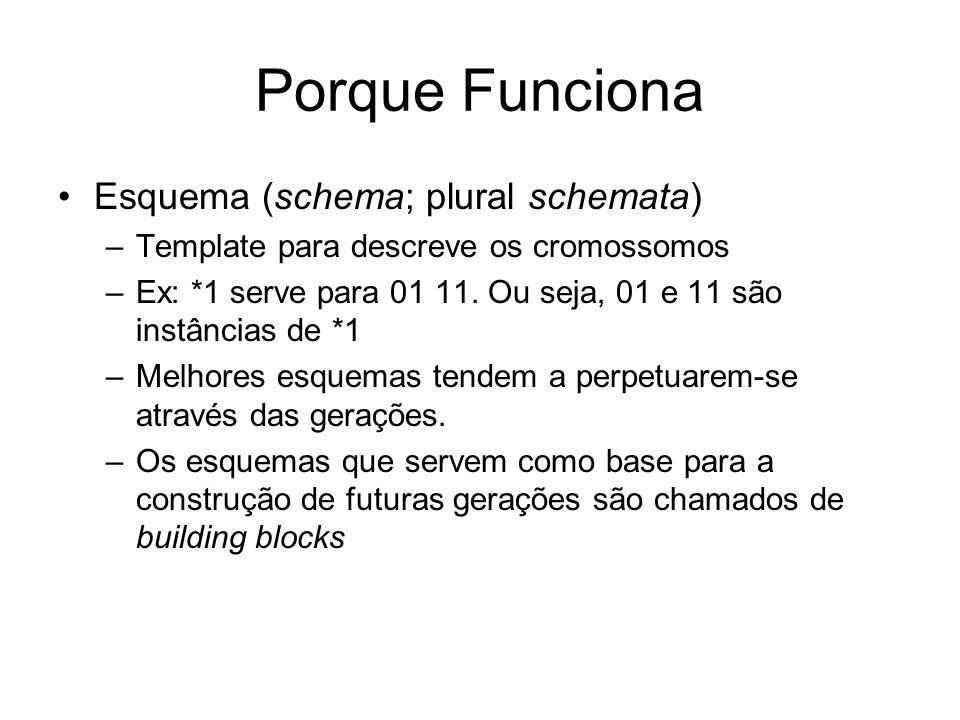 Porque Funciona Esquema (schema; plural schemata) –Template para descreve os cromossomos –Ex: *1 serve para 01 11. Ou seja, 01 e 11 são instâncias de