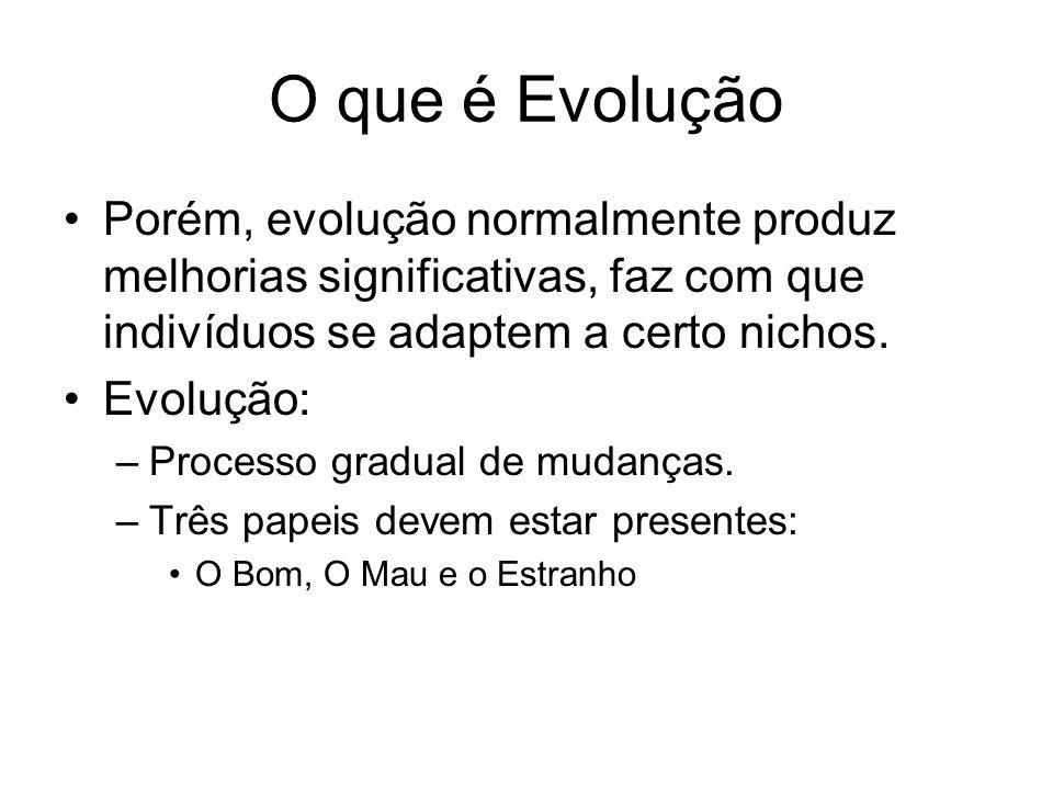 O que é Evolução Porém, evolução normalmente produz melhorias significativas, faz com que indivíduos se adaptem a certo nichos. Evolução: –Processo gr