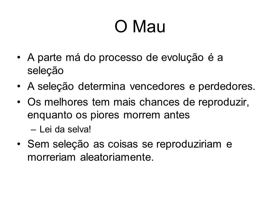 Porque Funciona Esquema (schema; plural schemata) –Template para descreve os cromossomos –Ex: *1 serve para 01 11.