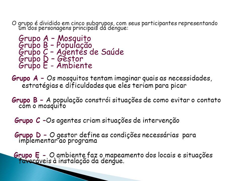 O grupo é dividido em cinco subgrupos, com seus participantes representando um dos personagens principais da dengue: Grupo A – Mosquito Grupo B – Popu