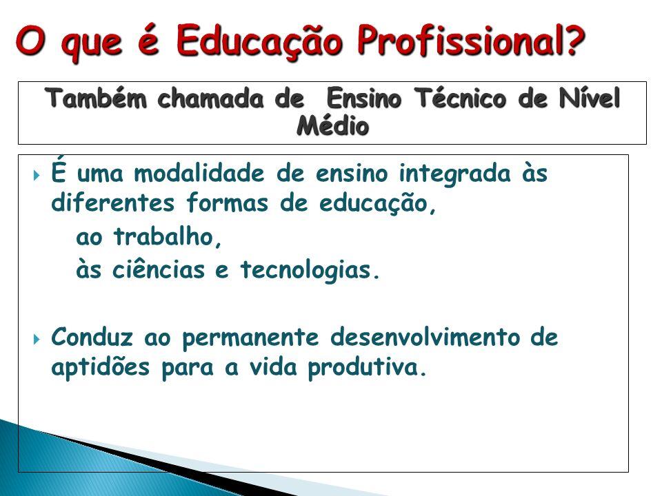 É uma modalidade de ensino integrada às diferentes formas de educação, ao trabalho, às ciências e tecnologias. Conduz ao permanente desenvolvimento de