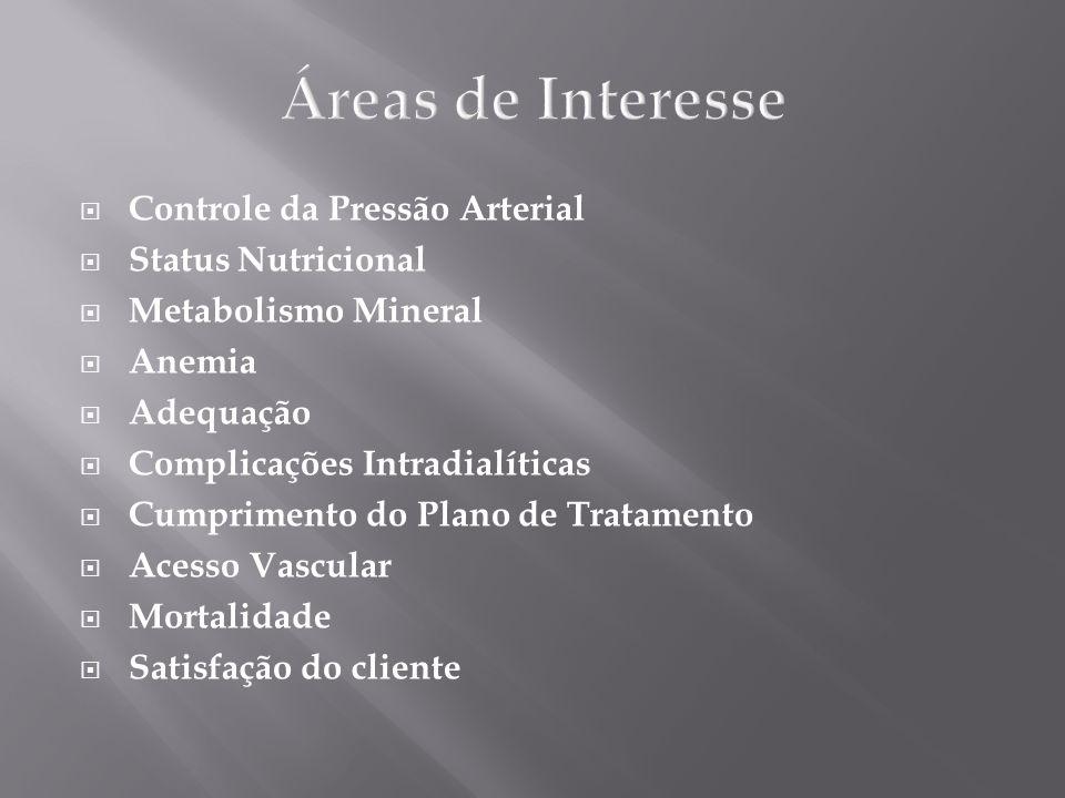 Áreas de Interesse Controle da Pressão Arterial Status Nutricional Metabolismo Mineral Anemia Adequação Complicações Intradialíticas Cumprimento do Pl
