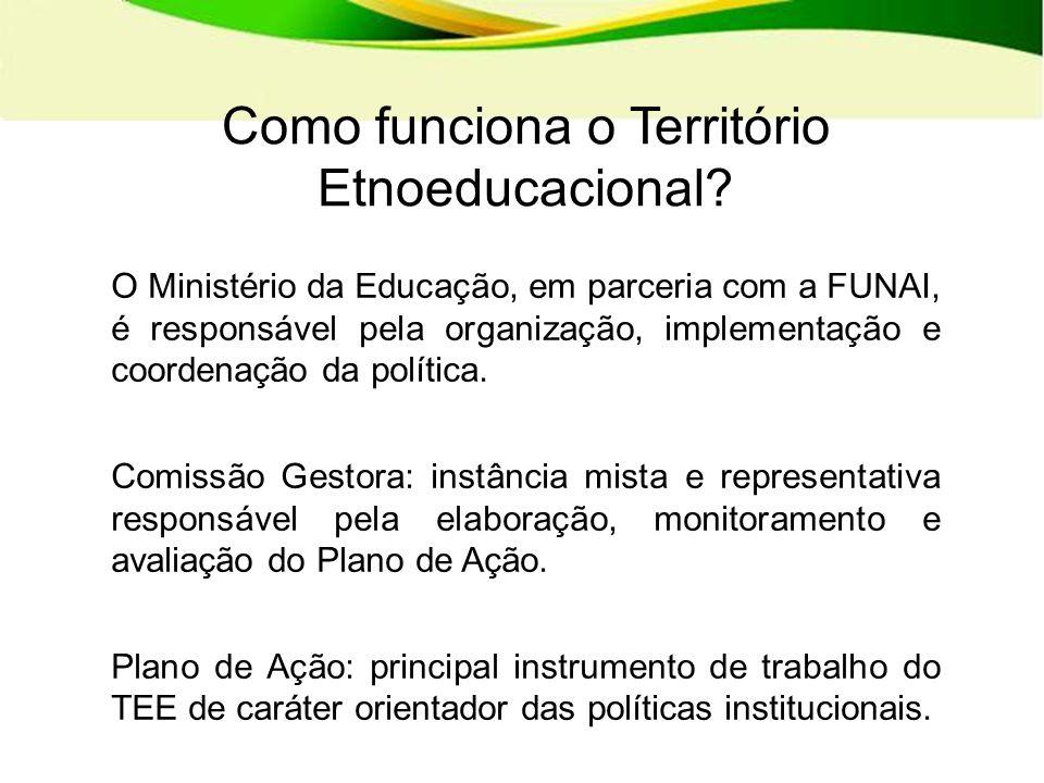 O Ministério da Educação, em parceria com a FUNAI, é responsável pela organização, implementação e coordenação da política.