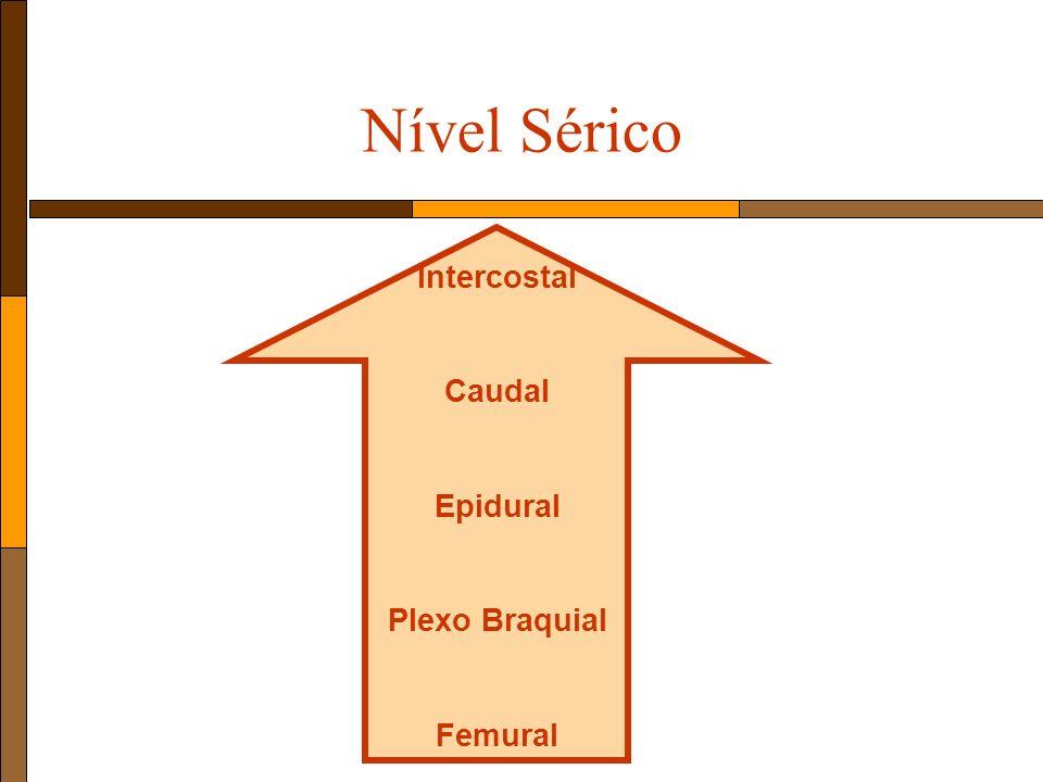 Nível Sérico Intercostal Caudal Epidural Plexo Braquial Femural