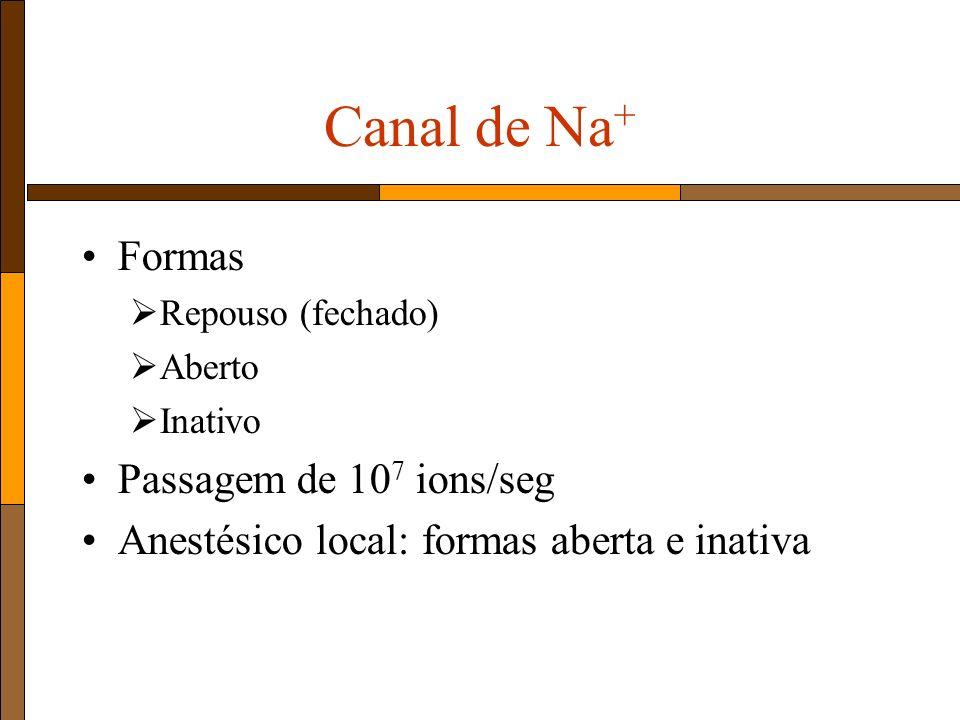 Canal de Na + Formas Repouso (fechado) Aberto Inativo Passagem de 10 7 ions/seg Anestésico local: formas aberta e inativa