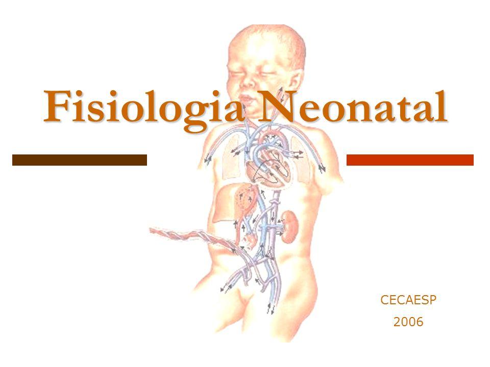 Definição Feto Neonato< 24hs Período Neonatal< 30 dias