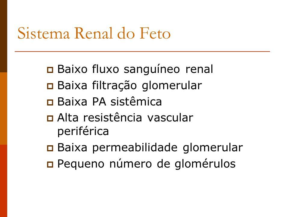Sistema Renal do Feto Baixo fluxo sanguíneo renal Baixa filtração glomerular Baixa PA sistêmica Alta resistência vascular periférica Baixa permeabilid