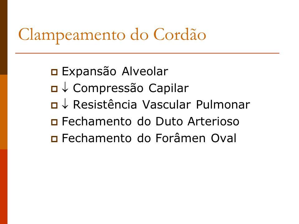 Apnéia Pós-Operatória Fatores de Risco < 50 semanas pós conceptual Múltiplas anomalias congênitas História de apnéia e bradicardia Doença pulmonar Depressores centrais Hipotermia