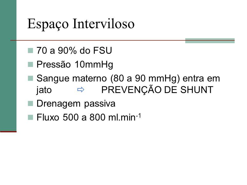 Espaço Interviloso 70 a 90% do FSU Pressão 10mmHg Sangue materno (80 a 90 mmHg) entra em jato PREVENÇÃO DE SHUNT Drenagem passiva Fluxo 500 a 800 ml.m