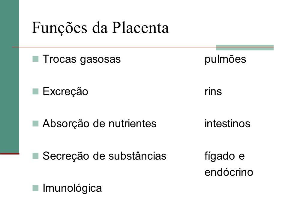 Funções da Placenta Trocas gasosaspulmões Excreçãorins Absorção de nutrientesintestinos Secreção de substânciasfígado e endócrino Imunológica