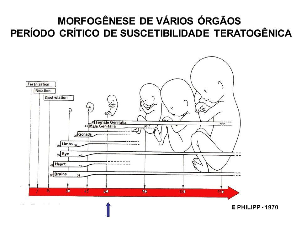 MORFOGÊNESE DE VÁRIOS ÓRGÃOS PERÍODO CRÍTICO DE SUSCETIBILIDADE TERATOGÊNICA E PHILIPP - 1970