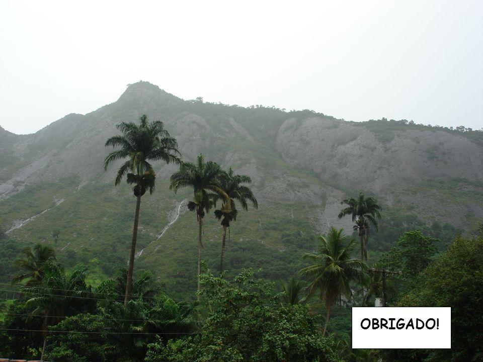 19 Seminário Regional de Capacitação Distrito 4410 de RI OBRIGADO!
