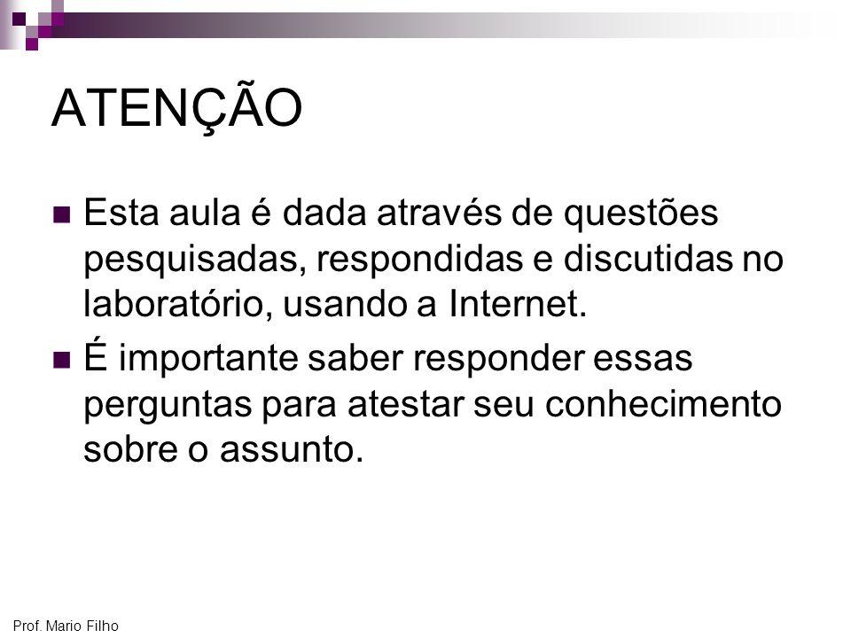 Prof. Mario Filho ATENÇÃO Esta aula é dada através de questões pesquisadas, respondidas e discutidas no laboratório, usando a Internet. É importante s