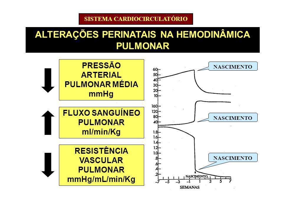 ALTERAÇÕES PERINATAIS NA HEMODINÂMICA PULMONAR ALTERAÇÕES PRESSÃO ARTERIAL PULMONAR MÉDIA mmHg FLUXO SANGUÍNEO PULMONAR ml/min/Kg RESISTÊNCIA VASCULAR