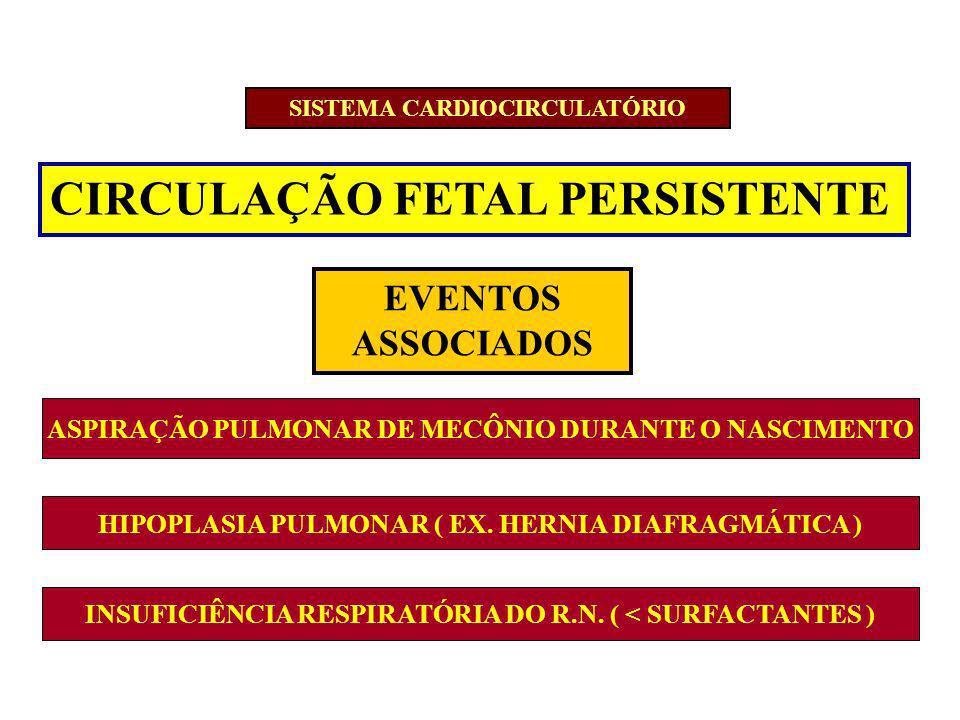 CIRCULAÇÃO FETAL PERSISTENTE EVENTOS ASSOCIADOS ASPIRAÇÃO PULMONAR DE MECÔNIO DURANTE O NASCIMENTO HIPOPLASIA PULMONAR ( EX. HERNIA DIAFRAGMÁTICA ) IN