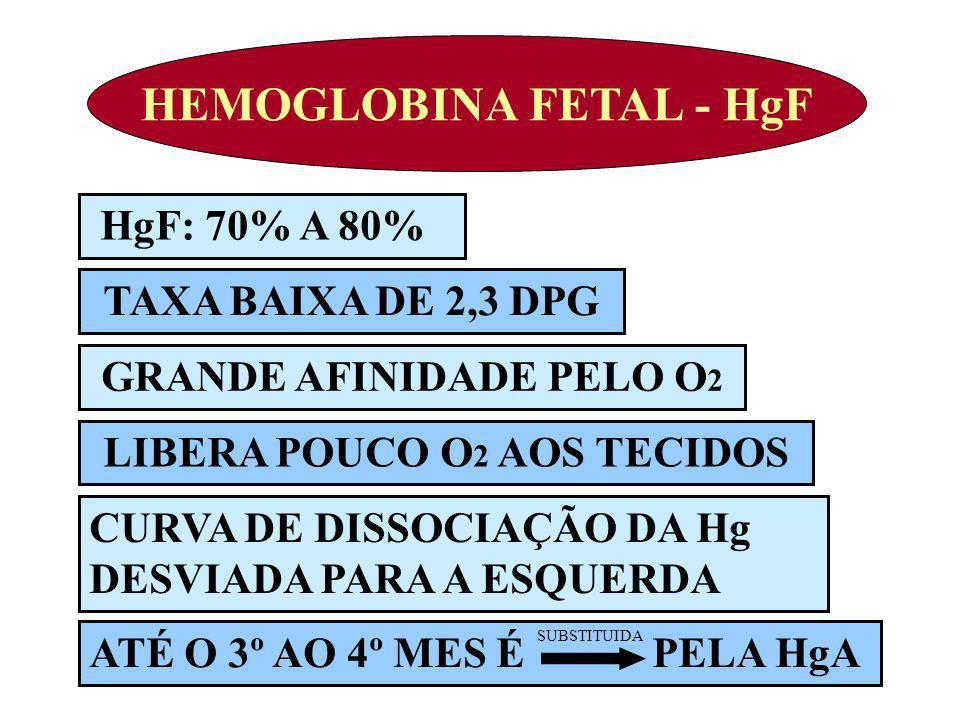 HEMOGLOBINA FETAL - HgF HgF: 70% A 80% TAXA BAIXA DE 2,3 DPG GRANDE AFINIDADE PELO O 2 LIBERA POUCO O 2 AOS TECIDOS ATÉ O 3º AO 4º MES É PELA HgA CURV
