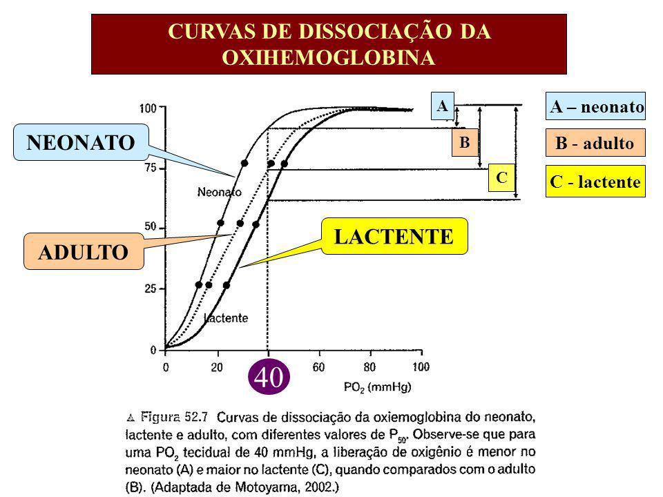 A – neonato B - adulto C - lactente CURVAS DE DISSOCIAÇÃO DA OXIHEMOGLOBINA A B C NEONATO LACTENTE ADULTO 40
