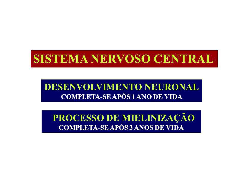 SISTEMA NERVOSO CENTRAL DESENVOLVIMENTO NEURONAL COMPLETA-SE APÓS 1 ANO DE VIDA PROCESSO DE MIELINIZAÇÃO COMPLETA-SE APÓS 3 ANOS DE VIDA
