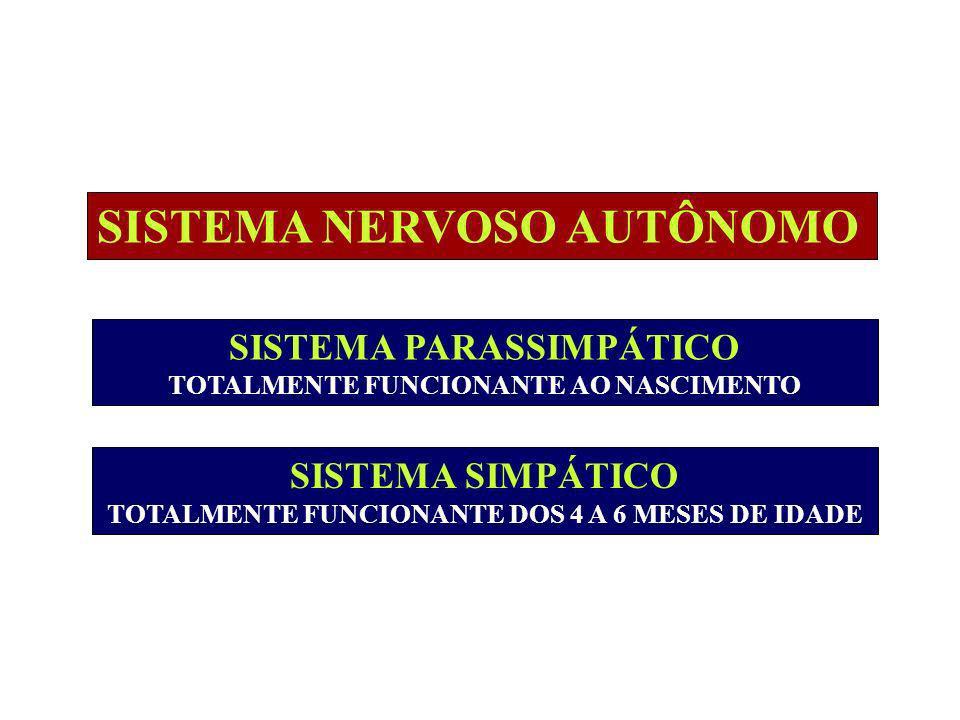 SISTEMA NERVOSO AUTÔNOMO SISTEMA PARASSIMPÁTICO TOTALMENTE FUNCIONANTE AO NASCIMENTO SISTEMA SIMPÁTICO TOTALMENTE FUNCIONANTE DOS 4 A 6 MESES DE IDADE