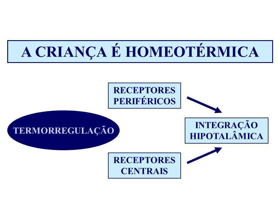 A CRIANÇA É HOMEOTÉRMICA TERMORREGULAÇÃO RECEPTORES PERIFÉRICOS RECEPTORES CENTRAIS INTEGRAÇÃO HIPOTALÂMICA