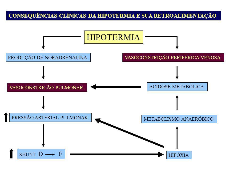 PRODUÇÃO DE NORADRENALINAVASOCONSTRIÇÃO PERIFÉRICA VENOSA VASOCONSTRIÇÃO PULMONAR PRESSÃO ARTERIAL PULMONAR SHUNT D E ACIDOSE METABÓLICA METABOLISMO A