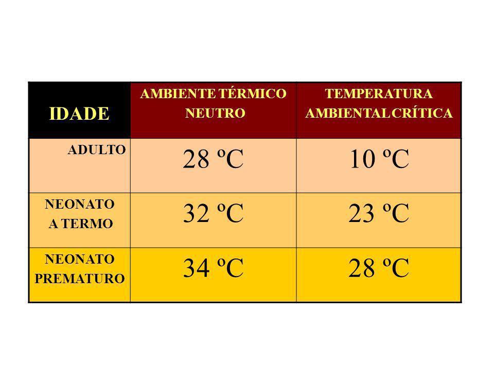 IDADE AMBIENTE TÉRMICO NEUTRO TEMPERATURA AMBIENTAL CRÍTICA ADULTO 28 ºC10 ºC NEONATO A TERMO 32 ºC23 ºC NEONATO PREMATURO 34 ºC28 ºC