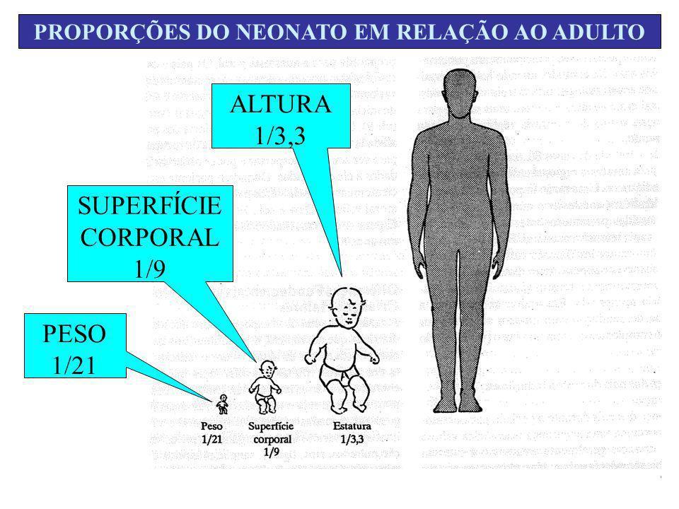 PROPORÇÕES DO NEONATO EM RELAÇÃO AO ADULTO PESO 1/21 SUPERFÍCIE CORPORAL 1/9 ALTURA 1/3,3