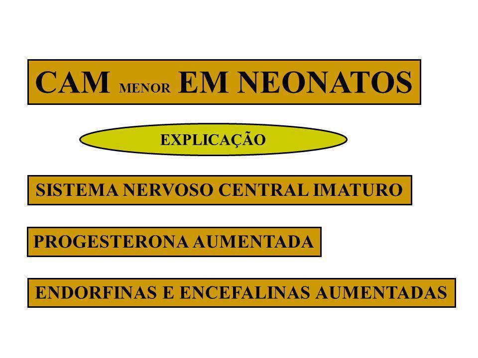 CAM MENOR EM NEONATOS SISTEMA NERVOSO CENTRAL IMATURO PROGESTERONA AUMENTADA ENDORFINAS E ENCEFALINAS AUMENTADAS EXPLICAÇÃO