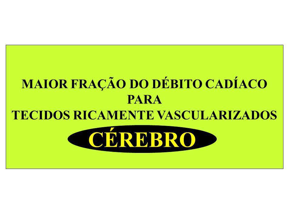 MAIOR FRAÇÃO DO DÉBITO CADÍACO PARA TECIDOS RICAMENTE VASCULARIZADOS CÉREBRO