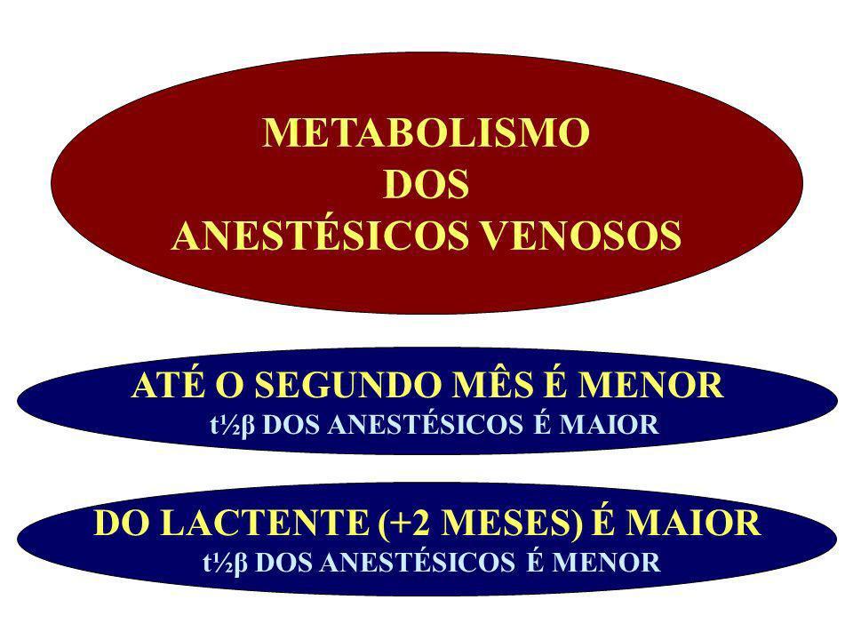 METABOLISMO DOS ANESTÉSICOS VENOSOS DO LACTENTE (+2 MESES) É MAIOR t½β DOS ANESTÉSICOS É MENOR ATÉ O SEGUNDO MÊS É MENOR t½β DOS ANESTÉSICOS É MAIOR