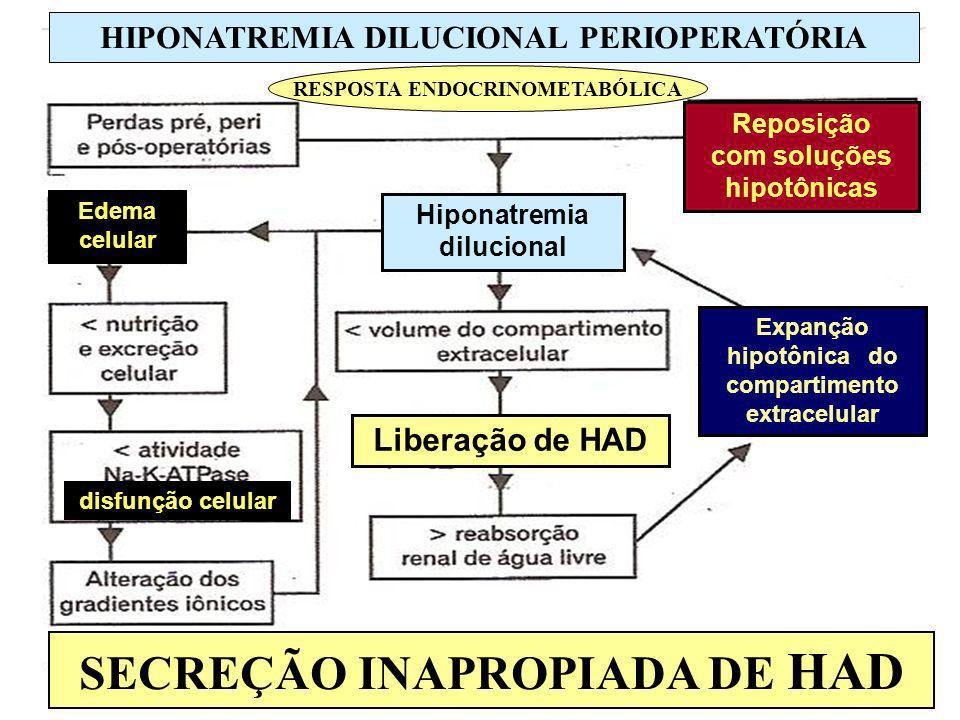 SECREÇÃO INAPROPIADA DE HAD HIPONATREMIA DILUCIONAL PERIOPERATÓRIA RESPOSTA ENDOCRINOMETABÓLICA Liberação de HAD Hiponatremia dilucional Edema celular