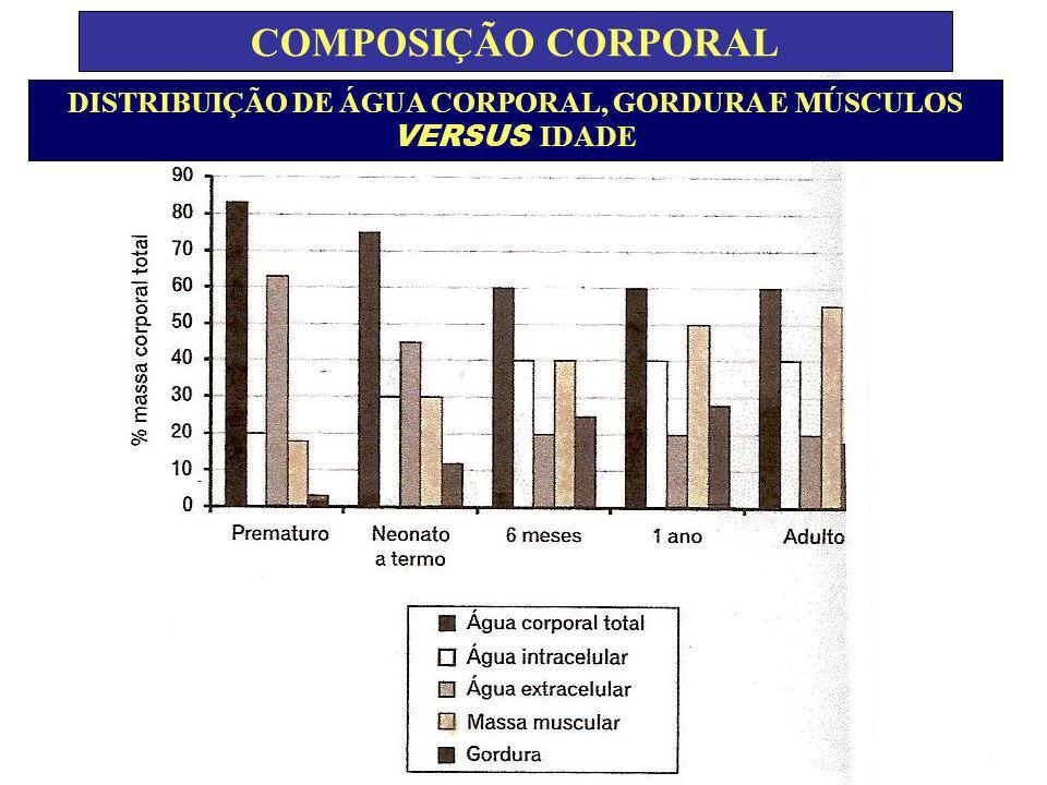 DISTRIBUIÇÃO DE ÁGUA CORPORAL, GORDURA E MÚSCULOS VERSUS IDADE COMPOSIÇÃO CORPORAL
