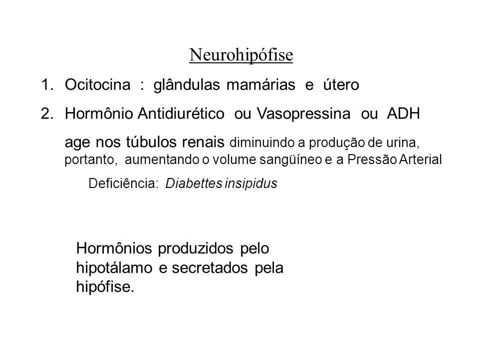 Neurohipófise 1.Ocitocina : glândulas mamárias e útero 2.Hormônio Antidiurético ou Vasopressina ou ADH age nos túbulos renais diminuindo a produção de