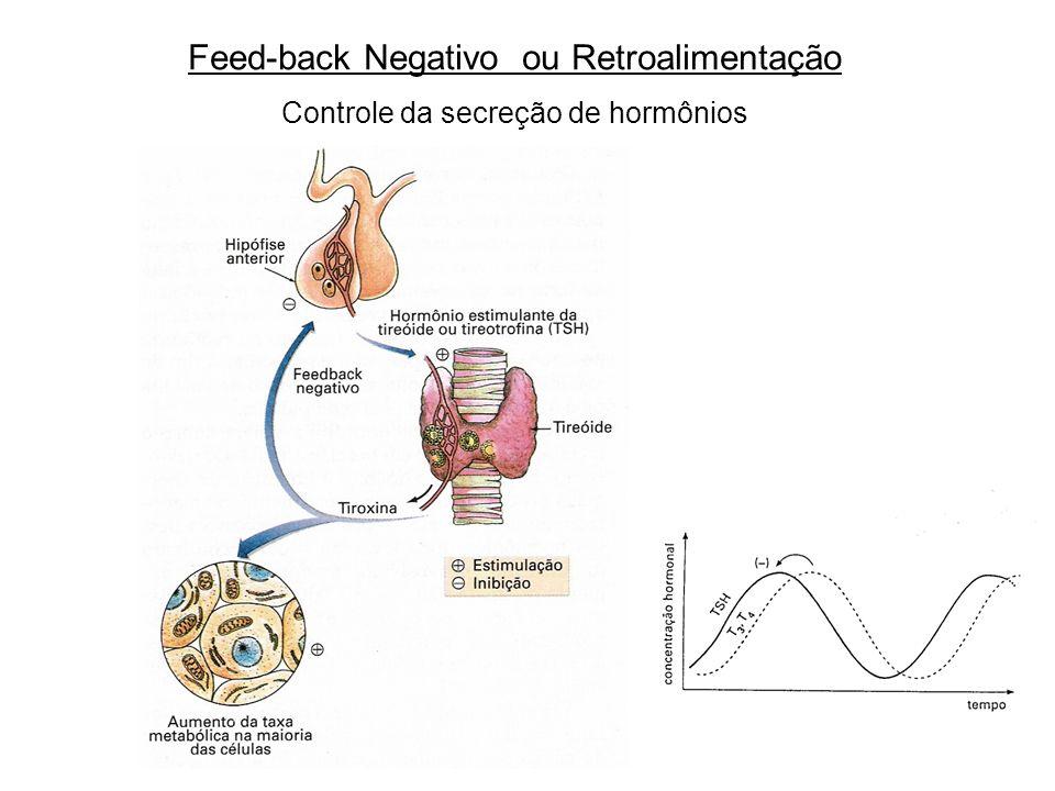 Feed-back Negativo ou Retroalimentação Controle da secreção de hormônios